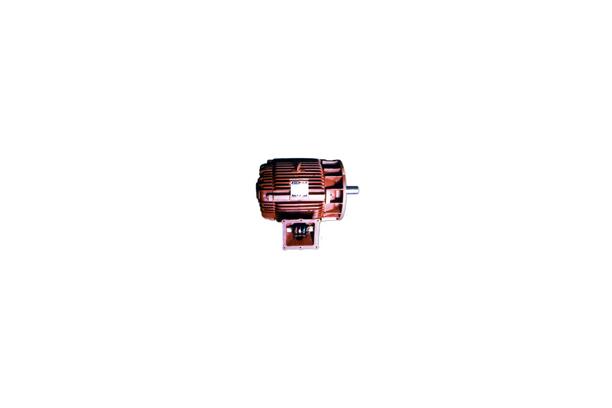 구명보트 모터(시동 토크: 270%)