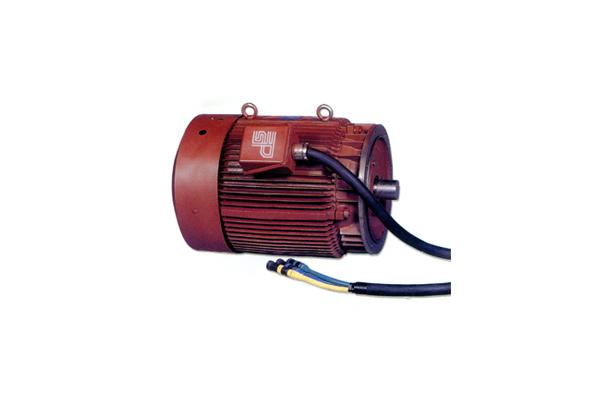 직접 시동 모터 120Hp.8p (시동 토크: 270%)