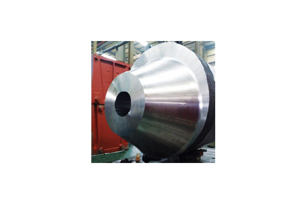 RCP CASING FOR NUCLEAR POWER GENERATION