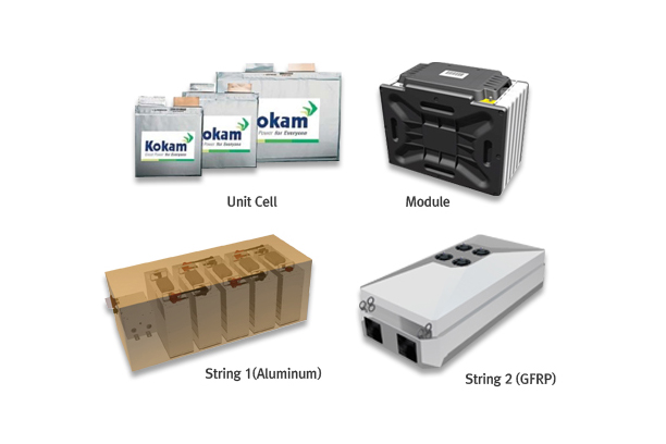 Lithium Polymer Battery System included BMS