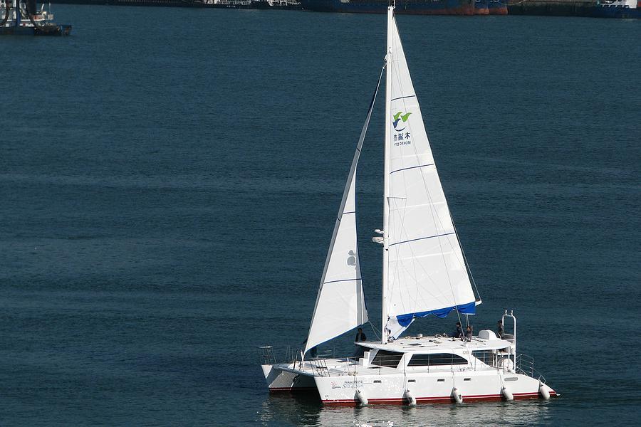 Pungryu Sail Cat 52