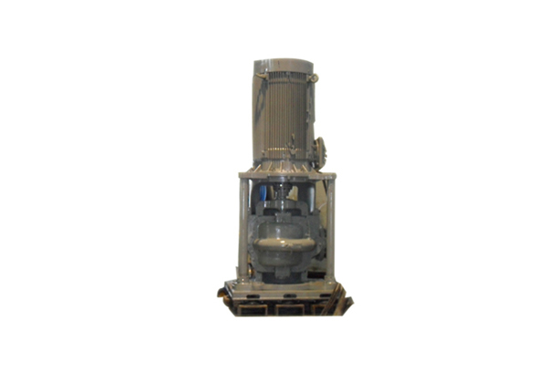Vertical fire pump for warship