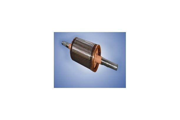 Rotor Ass'y shaft