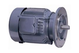 Three Phase Totally Enclosed Fan Cooled (Flange Type)