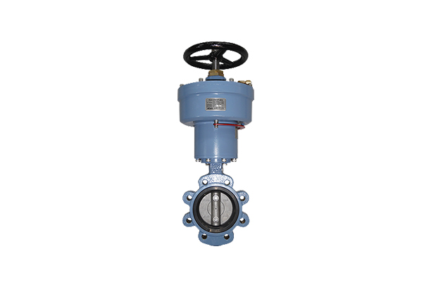 Water Shut-off Valve