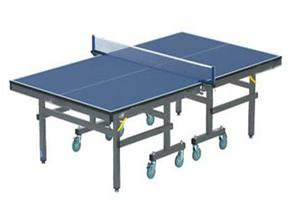 Pingpong Table with Accessories