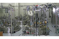 Electronic Material Plant