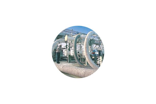 Jinflex LNG