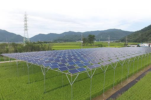 Agro-Photovoltaic Power Generation