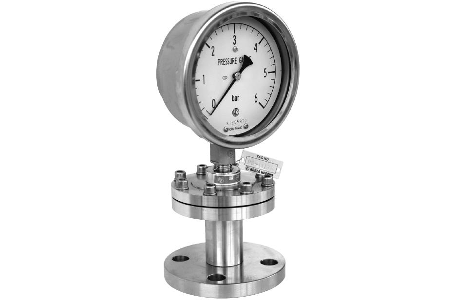 Diaphragm - Seal Type Pressure Gauge