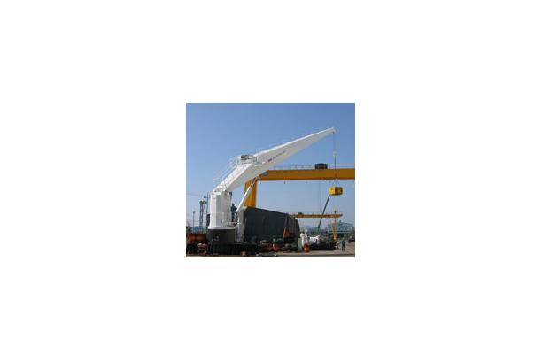 House Handing Crane