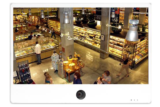IP Public View Monitor