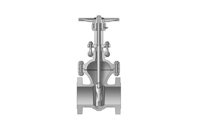 Bolted Bonnet Valve - Cast Steel Valve