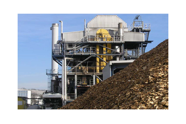 Power Plant Sector (Biomass Power generation system)