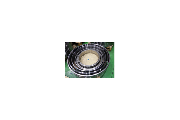 Piston Cleaning Ring