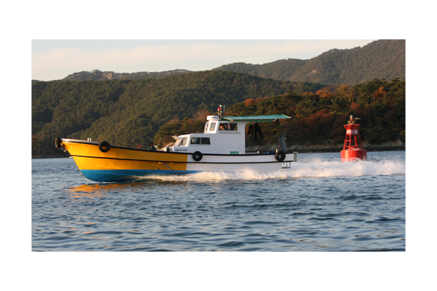 Supervision boat SW 4.2T