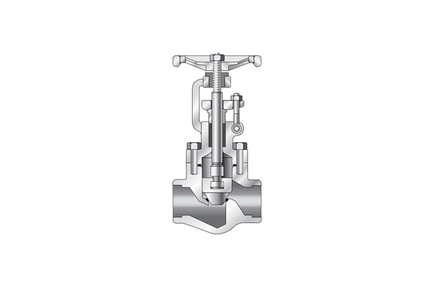Bellows Seal Globe Valve _ Forged Steel (Forged Valve)