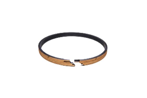 Piston Ring (Reciprocating Parts)